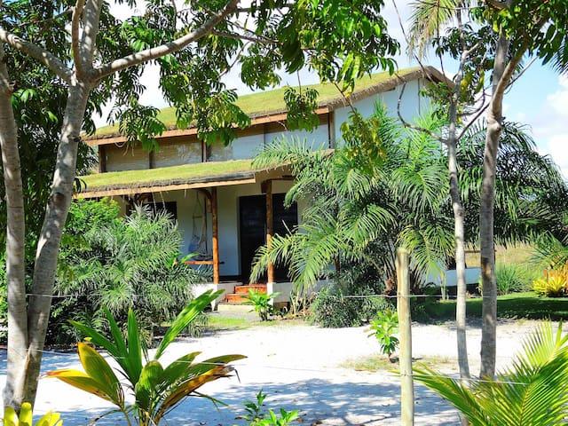 Beautiful bamboo houses in Algodões - Maraú - Altres