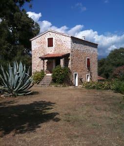 Maison en pierre de caractère - Carbuccia - Hus