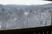 A winter view from the house.