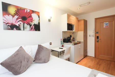 Comfortable Double Studio Next to Hyde Park H304 - London - Wohnung