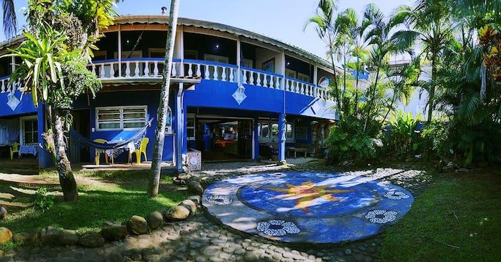 Golfinho tropical