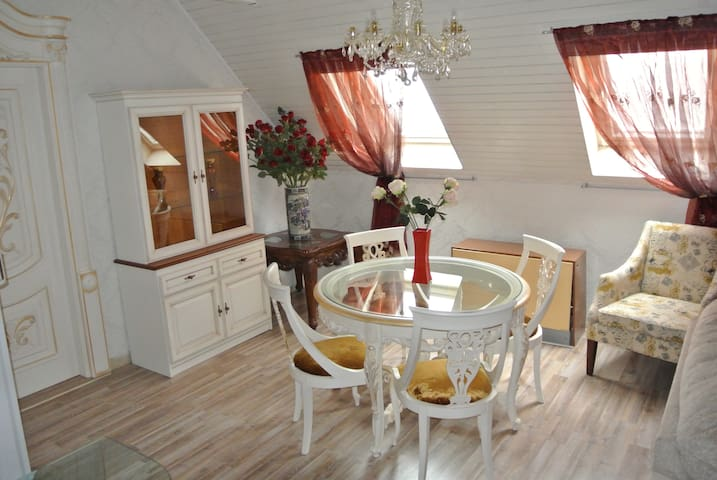 Люксусные апартаменты в центре МЛ - Mariánské Lázně - Daire
