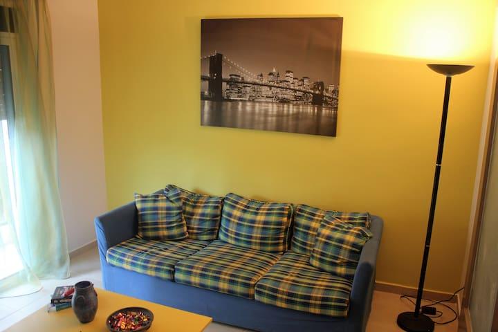 Ο 3 θέσιος καναπές απέναντι από την TV