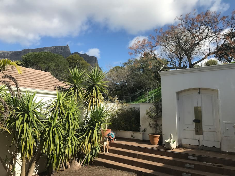 Front garden with views of table mountain and Lions head