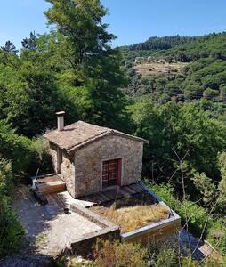 Petite maison de charme en Cévennes - Lasalle