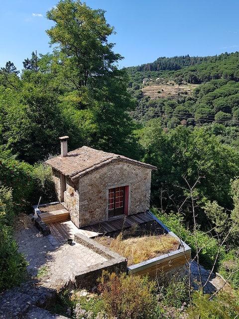 Charmantes kleines Haus in Cevennes - Lasalle