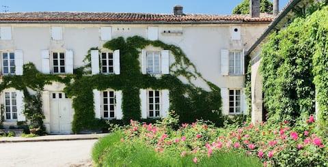 Maison de Maître dans les vignes de cognac