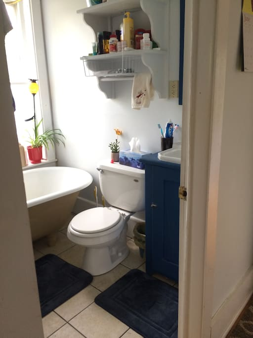 Full size old fashioned tub and shower.