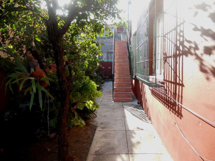 Entrada independiente con jardín