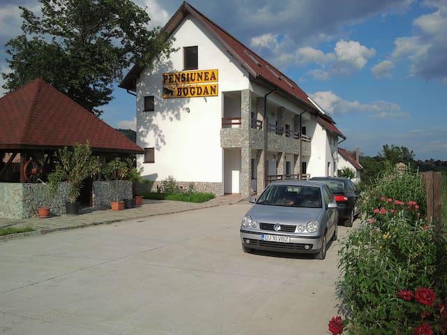 Pensiunea Bogdan - Apartment