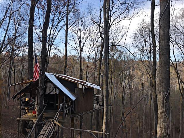 GA 400 Foothills Tree House