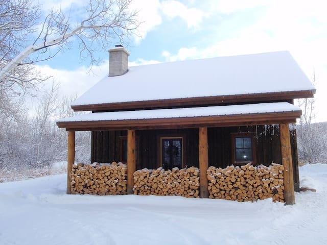 Aspen Grove Rental - Victor - Blockhütte