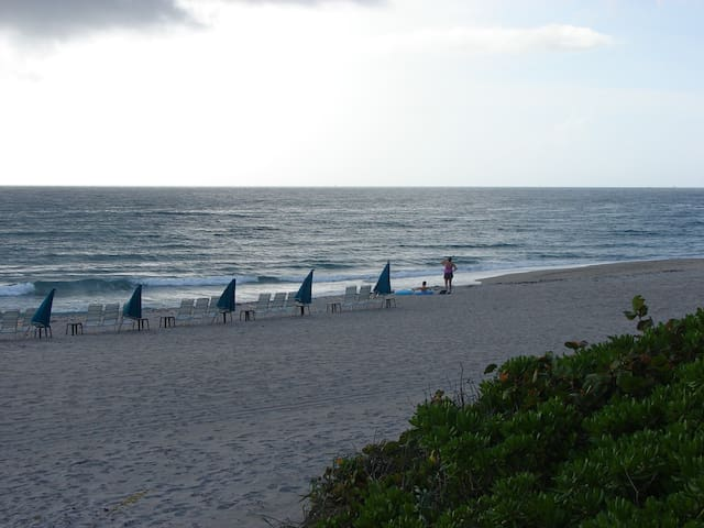 Beachfront 2 Bedroom Condo - Juno Beach