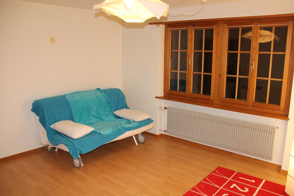 Living room with bed sofa
