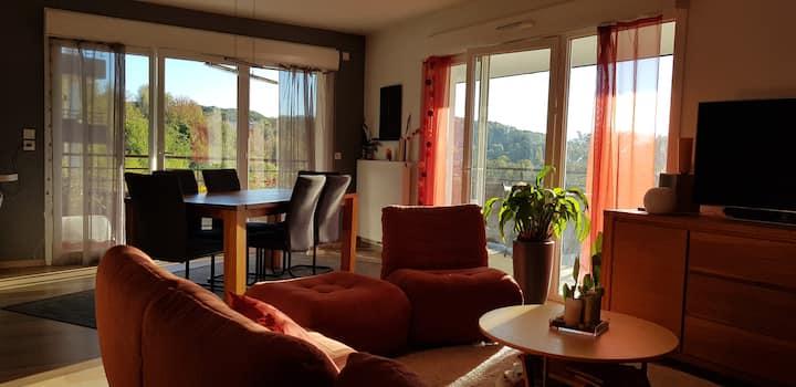 Appartement avec une vue proche de Genève