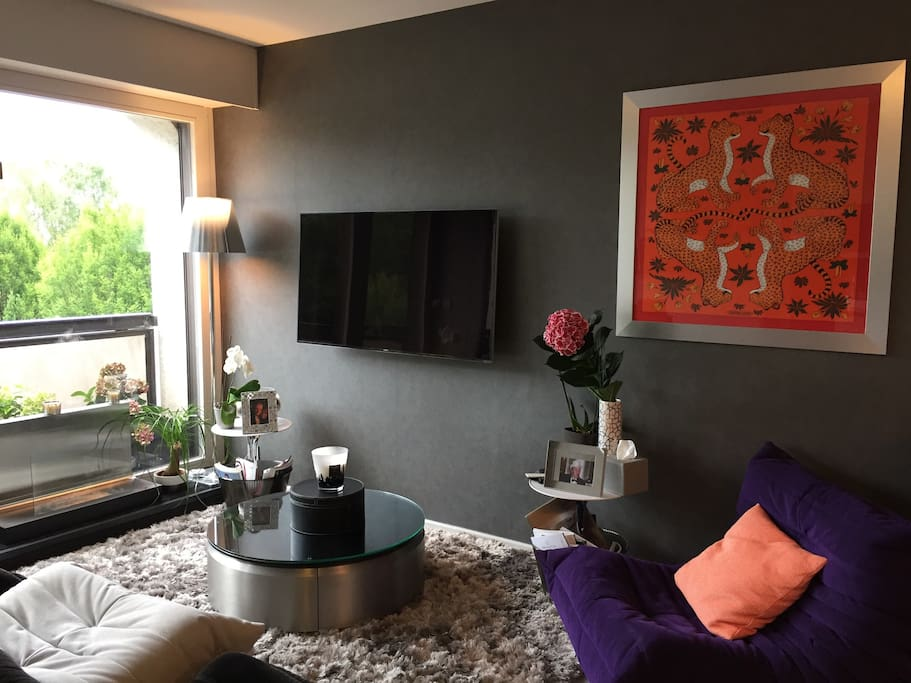 Living room with cable TV and Netflix