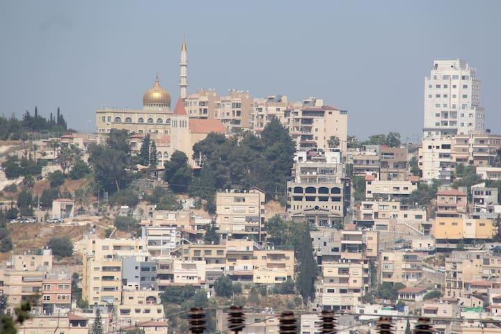 Tannous Apartments