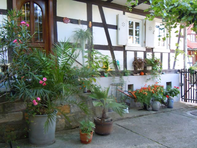 Charmante maison alsacienne