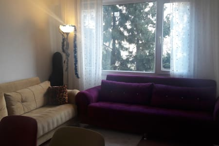 Sweet, relax :) - Bornova - Appartement