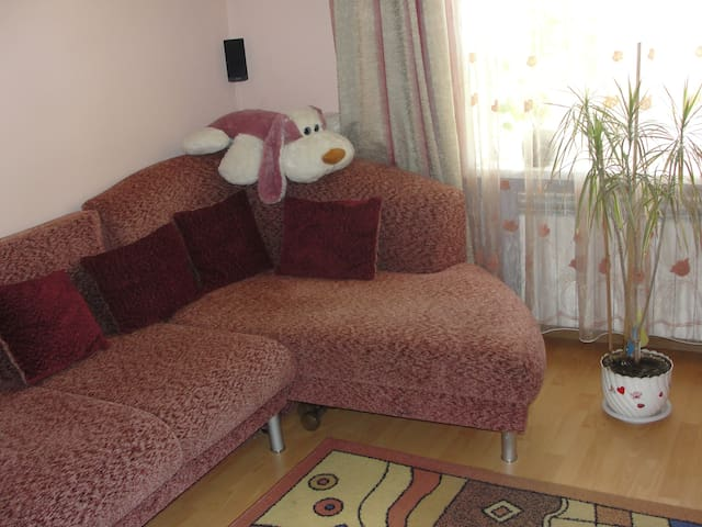 Big living room with free WIFI cent