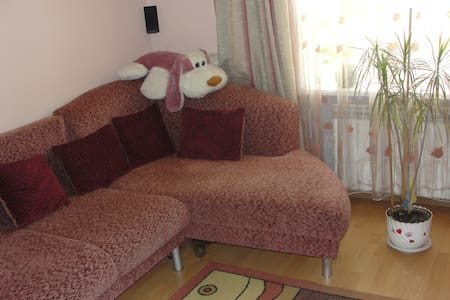 Big living room with free WIFI cent - Sokal - Apartemen