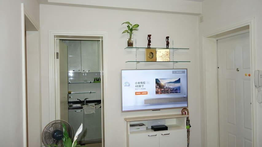 上海 南方商城附近 地铁1号线沿线 1室1厅 白色基调 温馨公寓