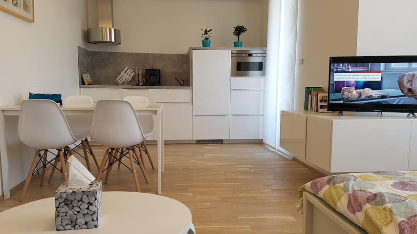 A lovely new flat close to Prague Castle