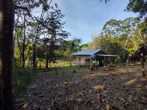 Bangalô na mata amazônica - Atalaia do Norte