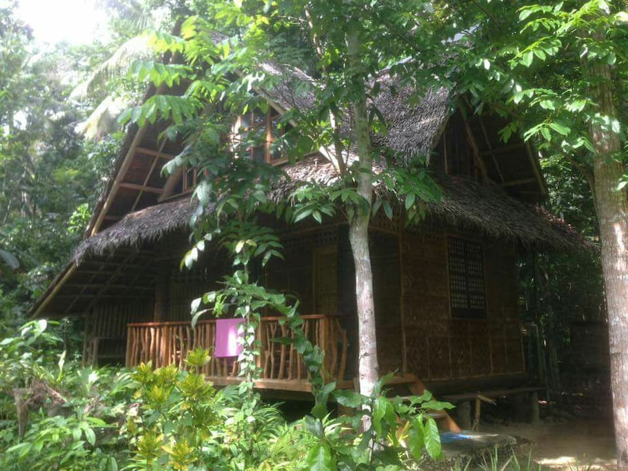 Riverside native house bungalows for rent in loboc for Native bungalow house