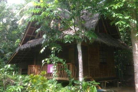 Riverside Native House - Loboc - Talo