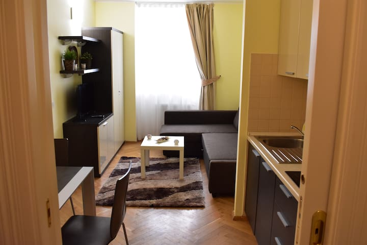 Apartment Viktoria - Hálkova 5