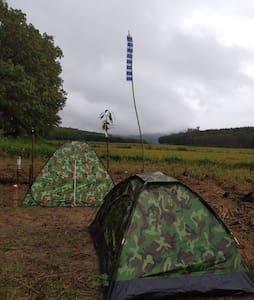 Tents at Raisanwiang จุดกางเต็นท์เชียงราย
