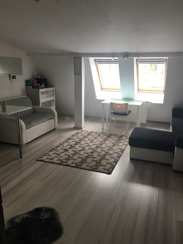 Cosy and elegant studio flat with WIFI for 3 ppl - Warszawa - Apartment