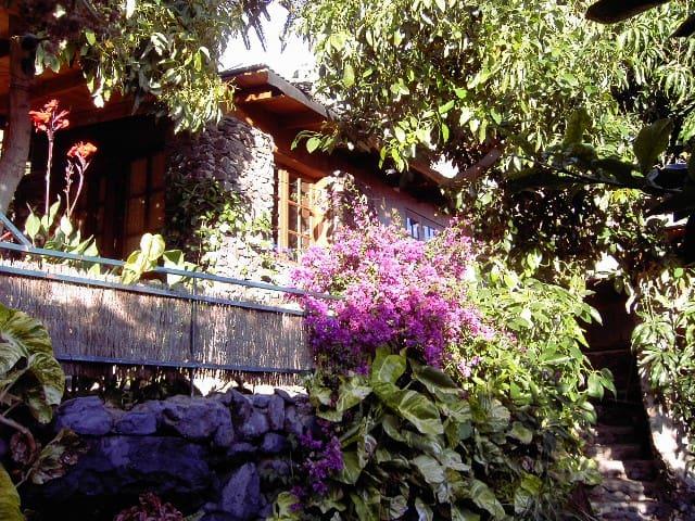 Natursteinhäuschen unter Palmen - Valle Gran Rey