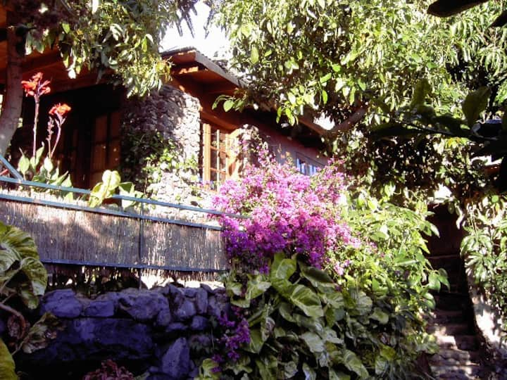 Natursteinhäuschen unter Palmen Casa Avocado