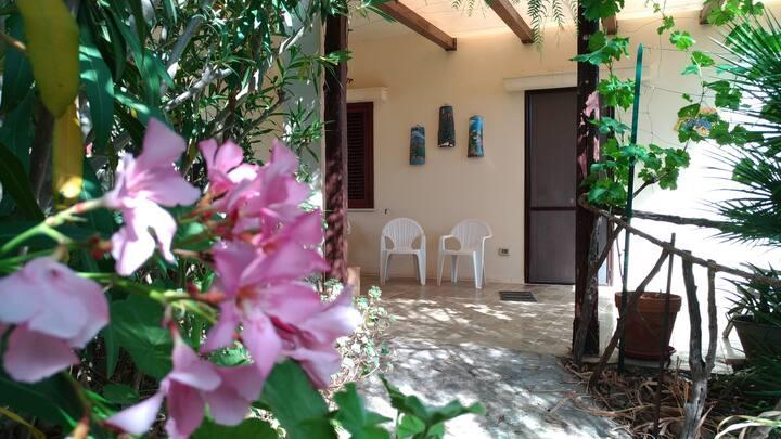 L' Oleandro Rosa (The Pink Oleander) Casa Vacanza