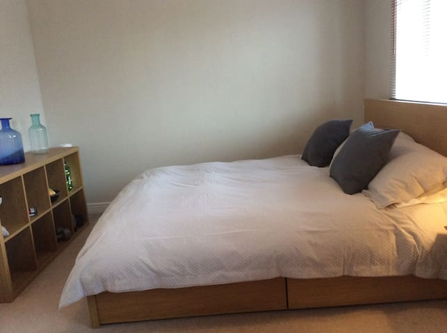 Large bedroom with shower room