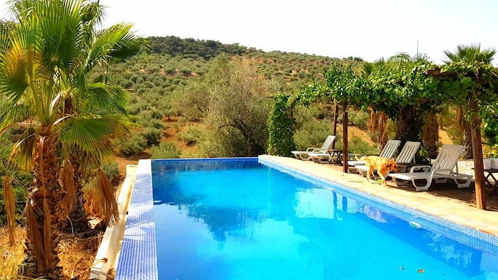 Peaceful Farm-stay in the countryside of Malaga