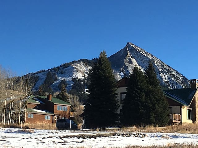 HOT TUB time machine House! - Crested Butte - Hus