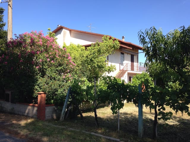 On a green hill near Trasimeno Lake - Castiglione del Lago - House