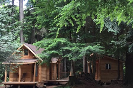 Eco-Friendly Tiny House Vashon Island