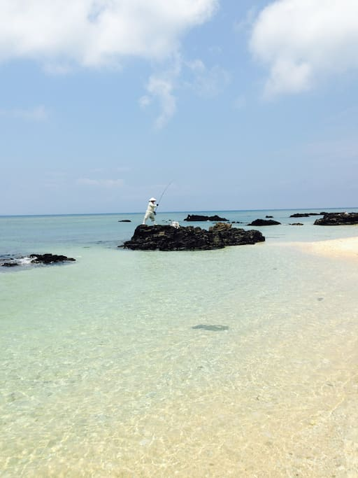 Clear, clean ocean full of tropical fish and white sand