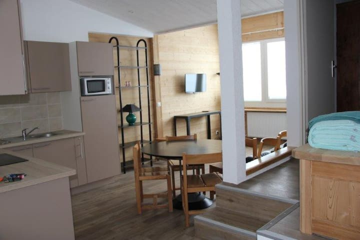 CA88 - 2 separated bedrooms apt. Ski in and out. - TIGNES - Flat