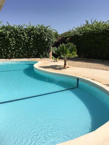 Palmela surveille la piscine