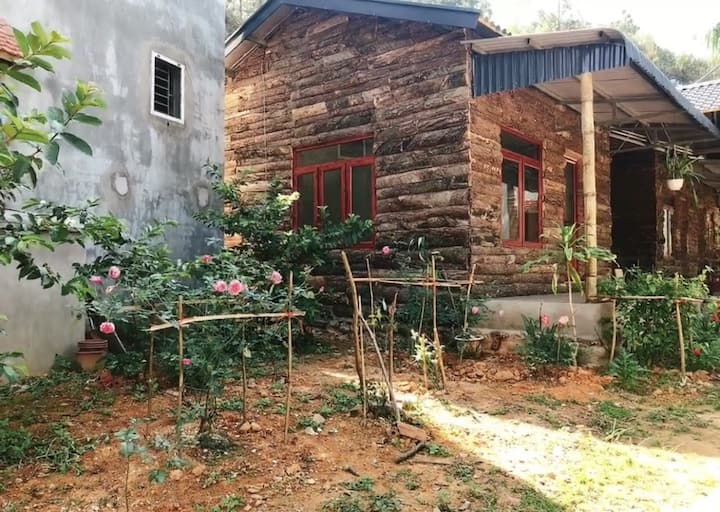 Nice cozy homestay in Binh Lieu central