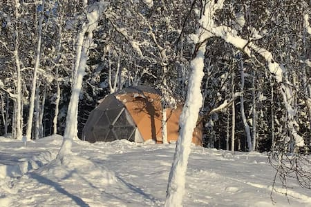 Glamping  North - Arctic light - Fjord view