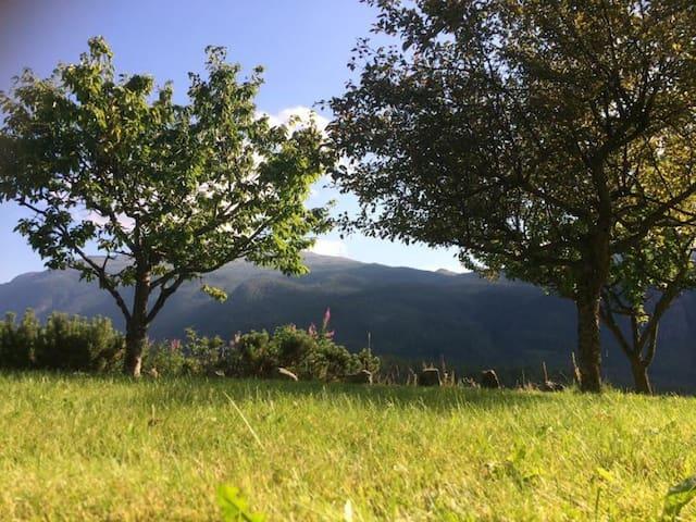 Fjellhus i naturskjønne omgivelser - Flatdal