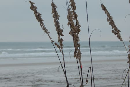 5 walking minutes to the beach - Saint Augustine