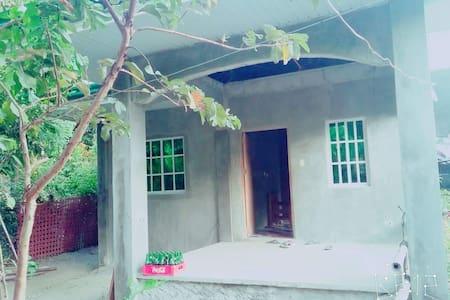 Jalipa Residence - House