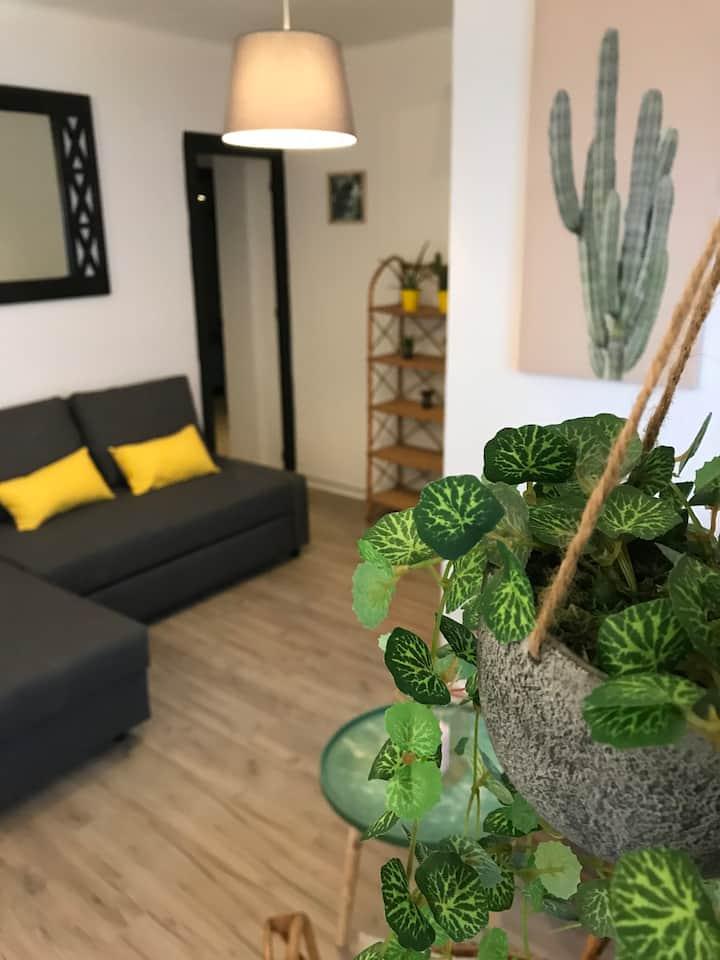 Cactus, a cosy apartment center of Torremolinos